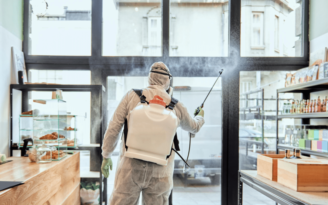 One-of-a-Kind Coating That Kills Coronavirus for 90 Days on Surfaces